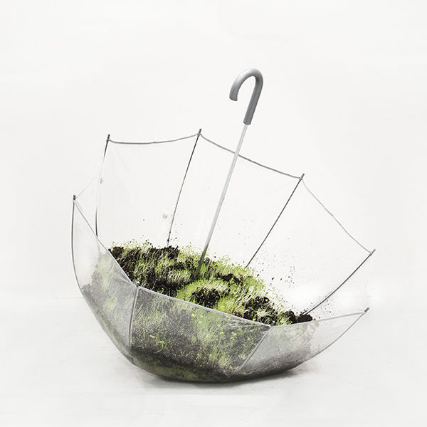 Jennifer Kaplan,  Water on Mondays,  umbrella, soil, plants, 2019. Courtesy of The Clay Studio