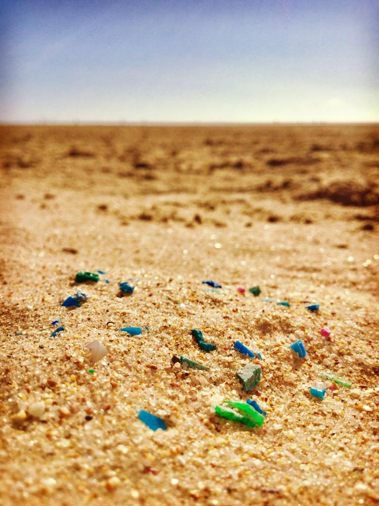 Pedazos muy pequeños de plástico llegan a nuestro mar y son consumidos por diferentes especies que terminan en nuestros platos.