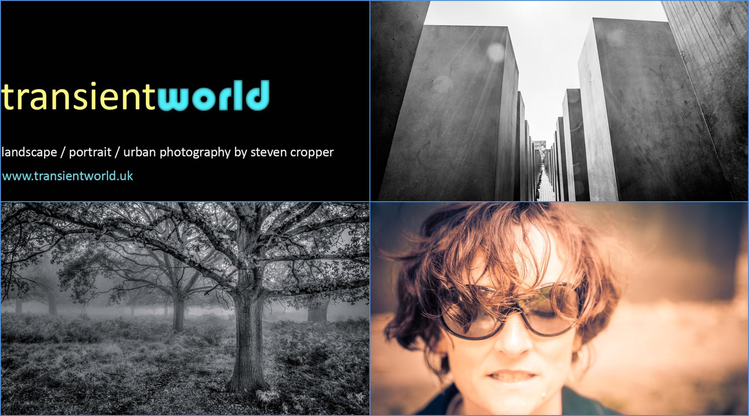 transientworld flyer (2).jpg