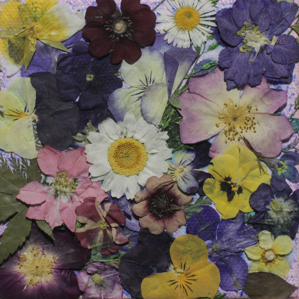 FLOWERY - Stephanie Bradley