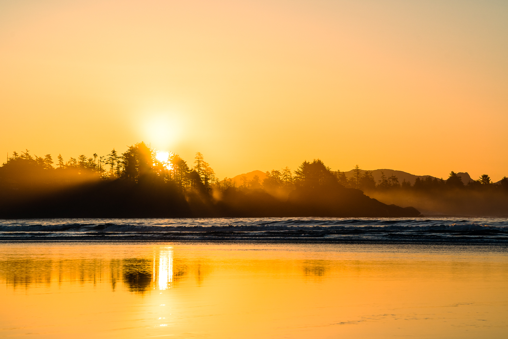 tofino-chesterman-beach-herron-01085.jpg