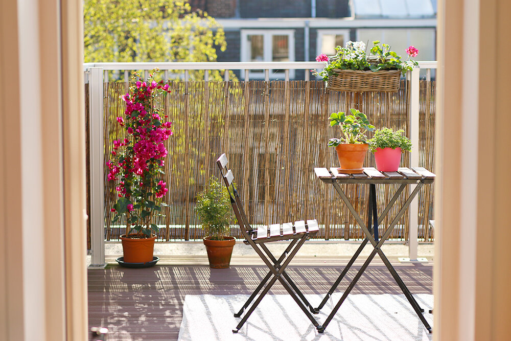 selection-plantes-balcon-terrasse (1).jpg