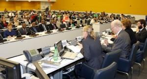 UN_IYF2014_forum.jpg