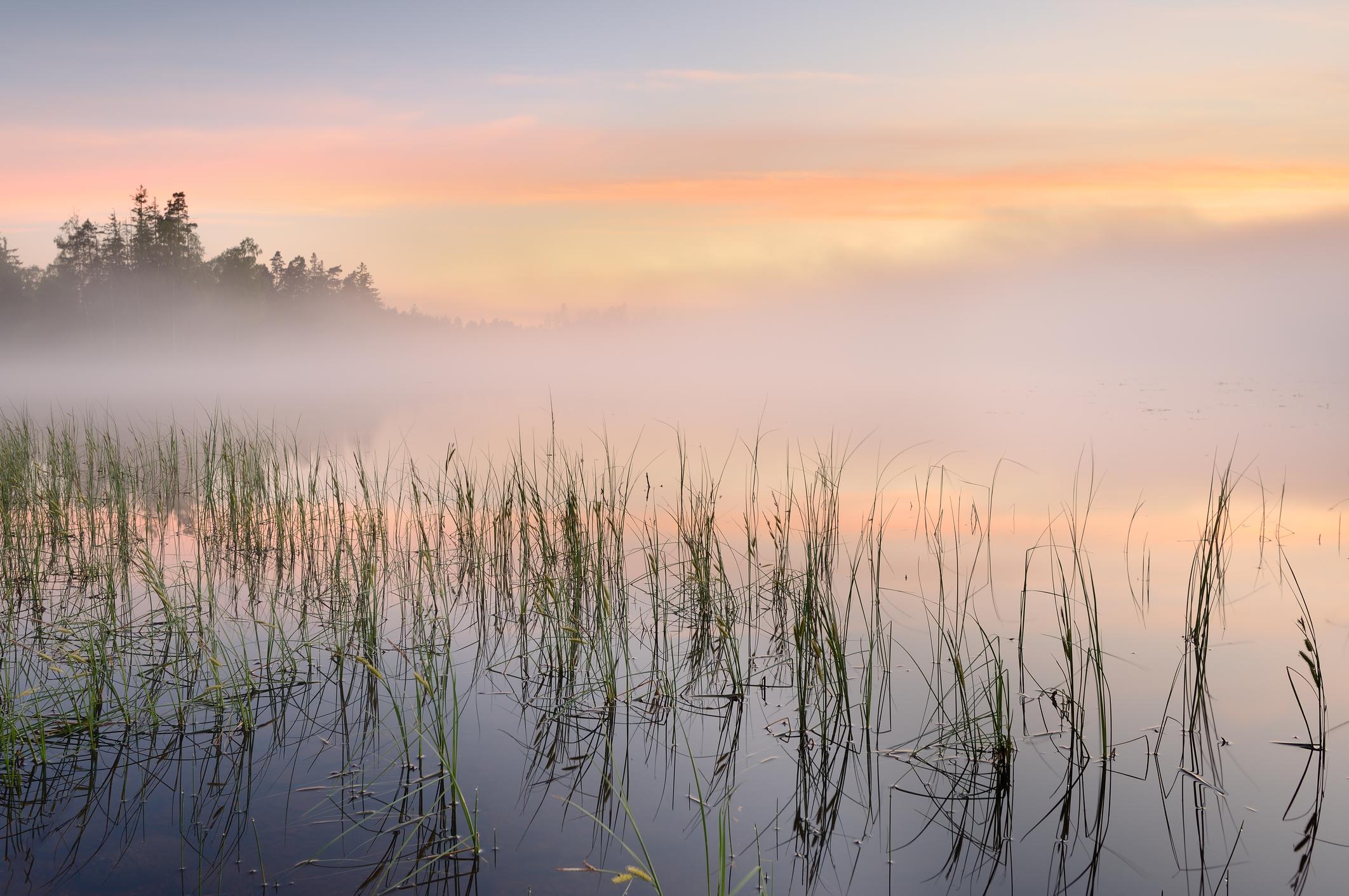 soft pink lake.jpg