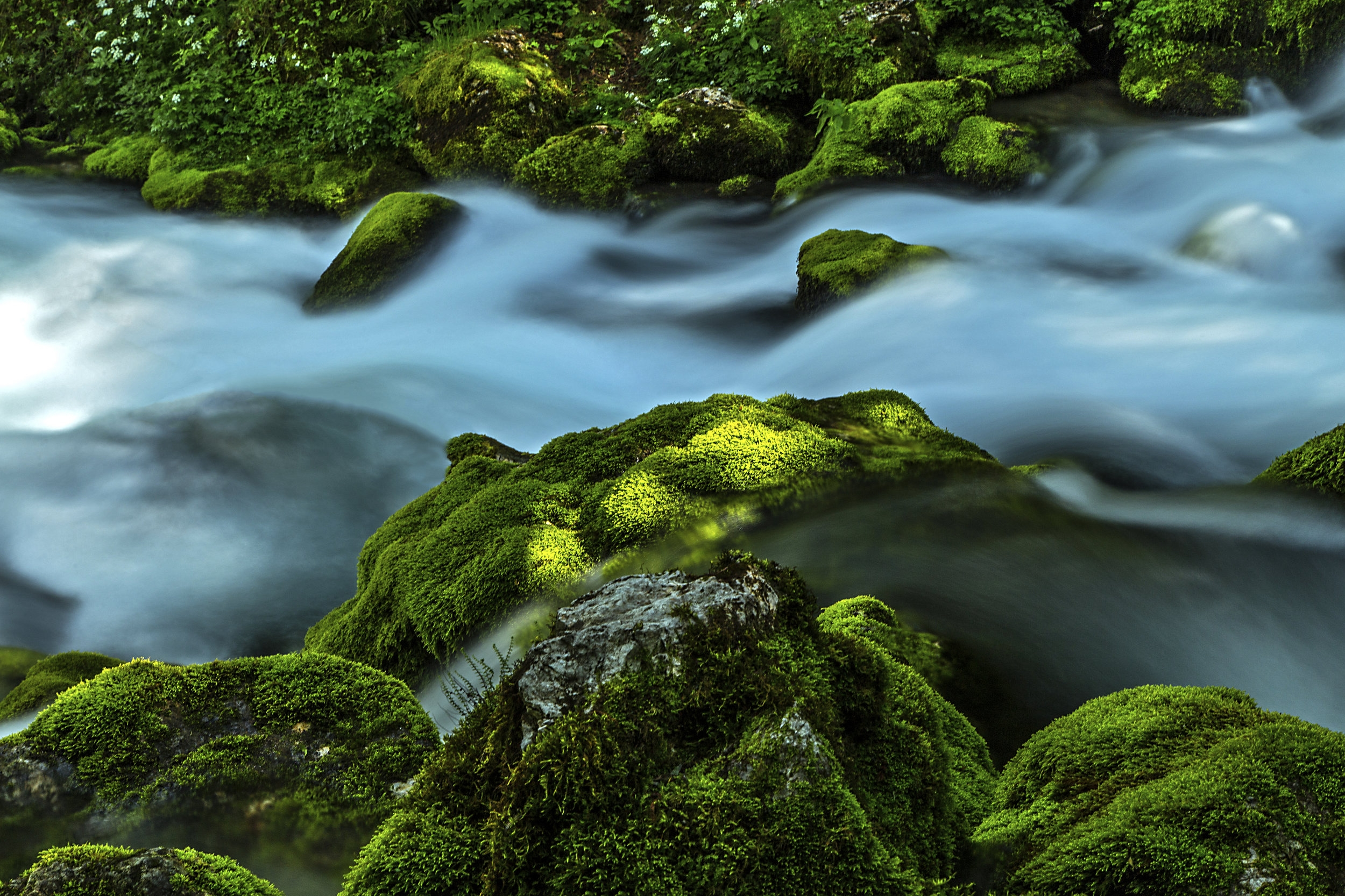 Green moss rock. Flowing water.jpg
