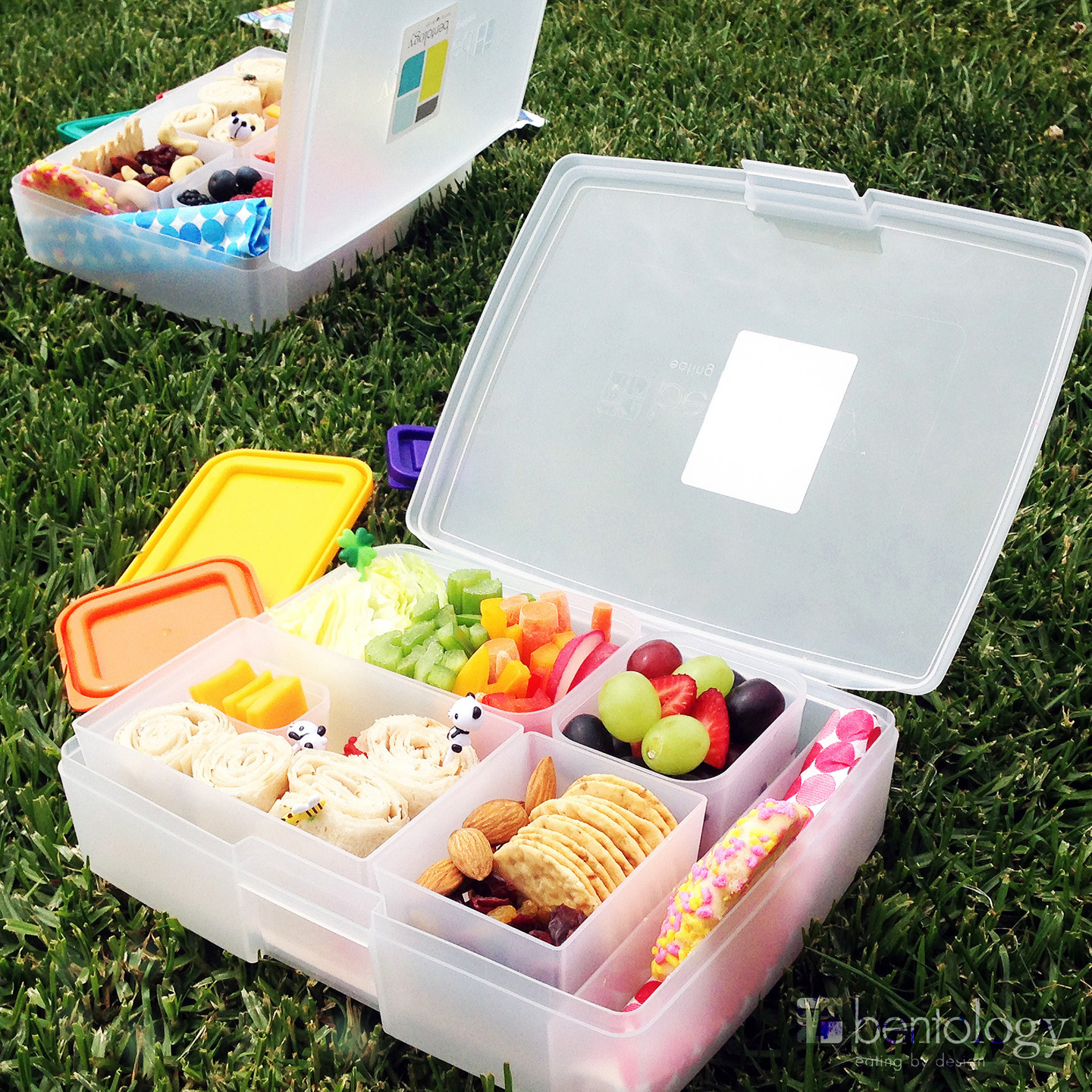 The Zulily Image: Summer Camp Lunches