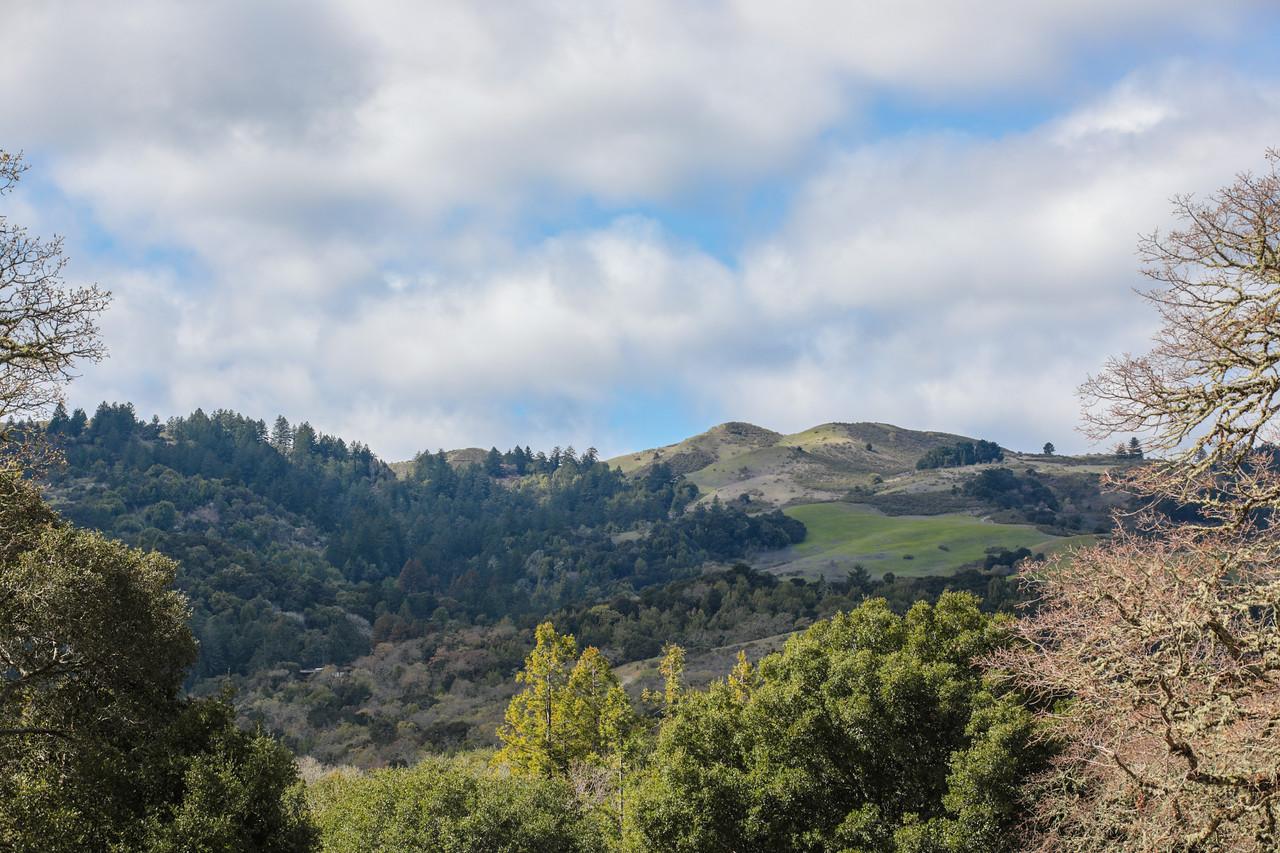 Portola Valley Ranch Blu Skye Media-8734-X2.jpg