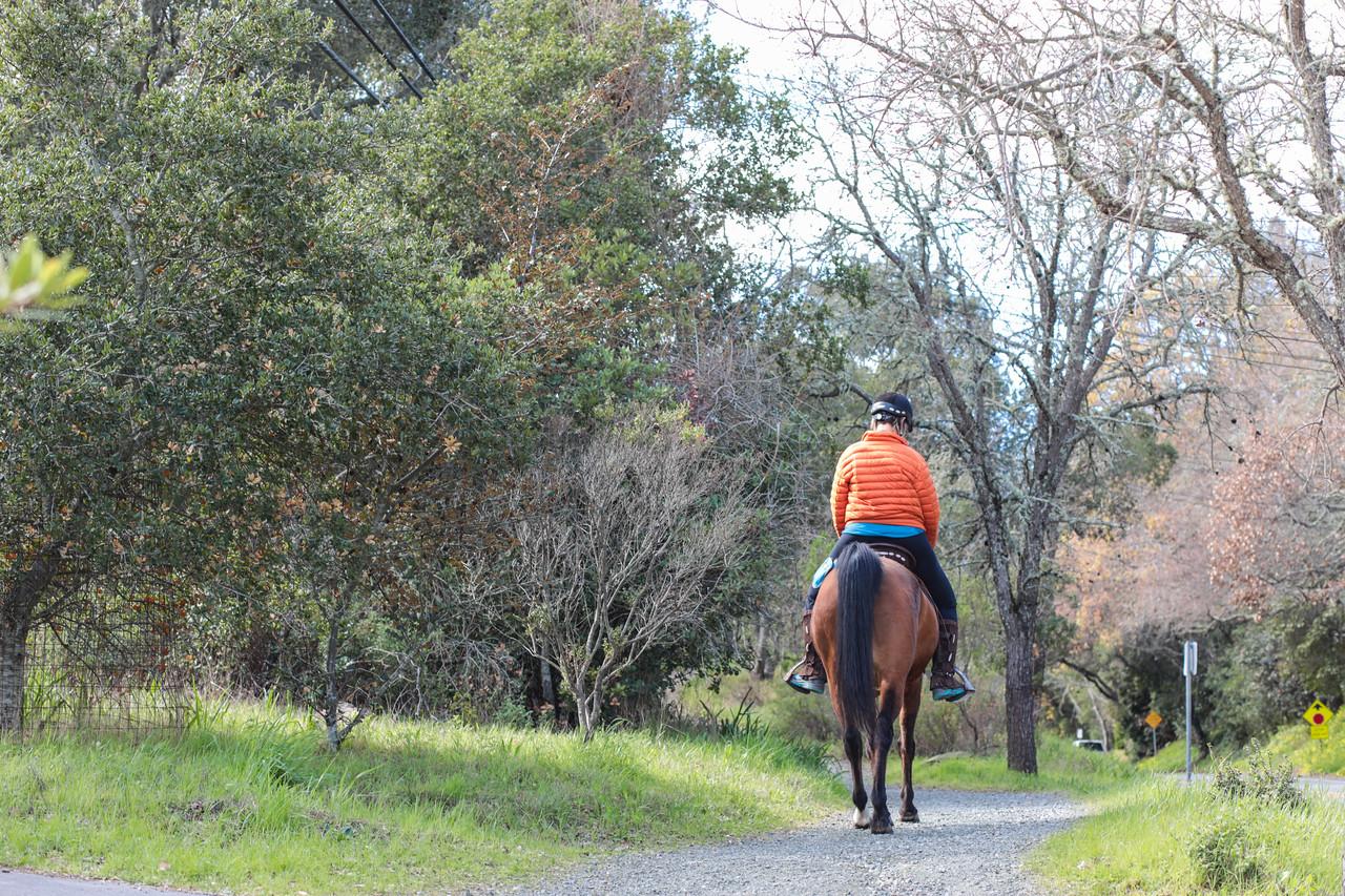 Portola Valley Ranch Blu Skye Media-8694-X2.jpg