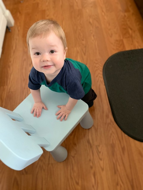Teddy so badly wanted to help. He kept pushing a chair around to get in on the action. He finally gave up and headed for the tupperware drawer.