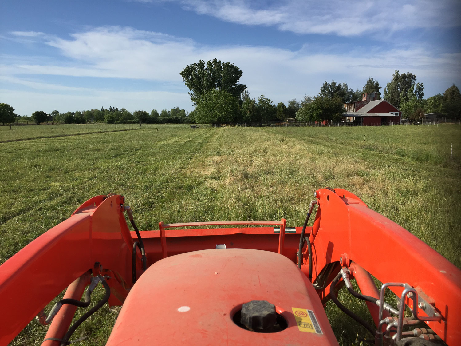Driving the tractor while mowing.