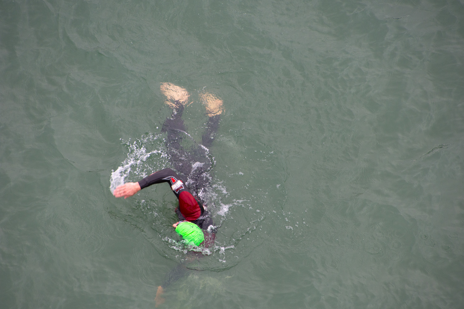 Swimmer in Ironman Santa Rosa 2019.