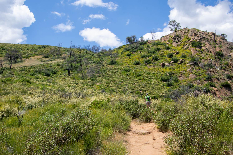 Hiking along the ridge at Stebbins Cold Canyon