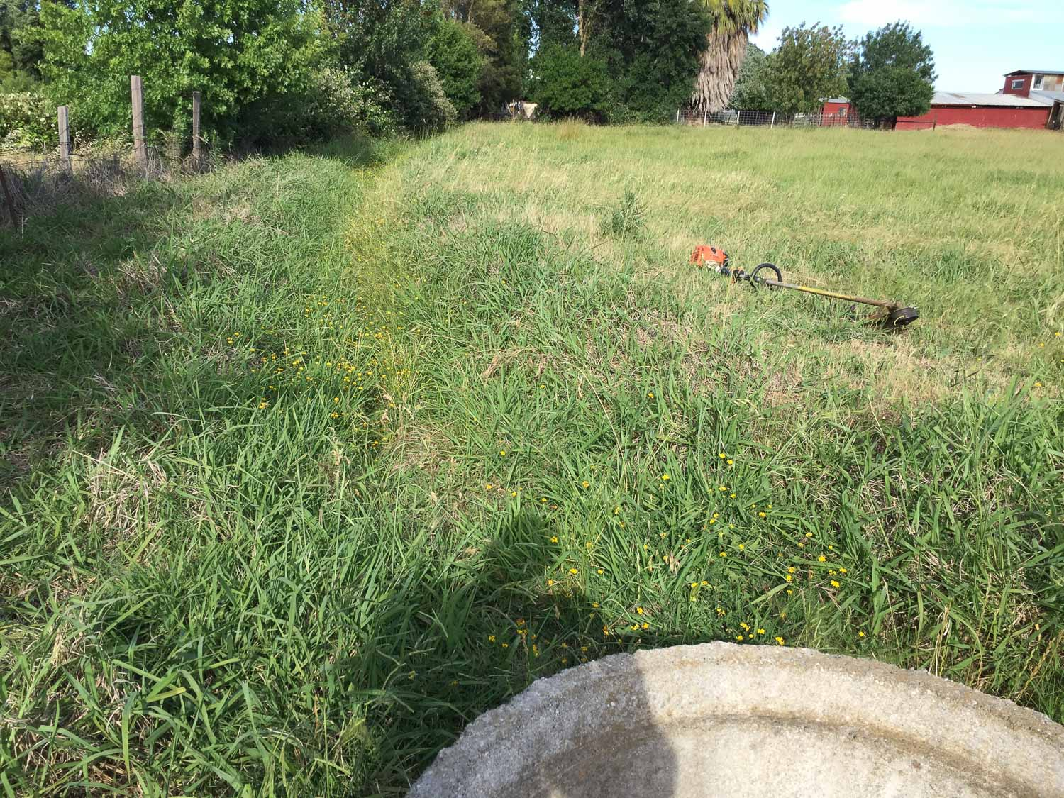Irrigation ditch at end of pasture.