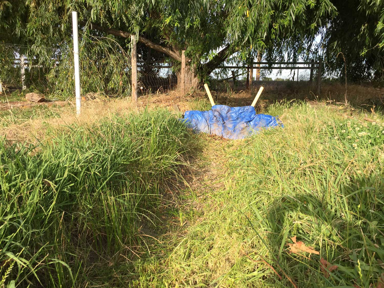 Irrigation tarp