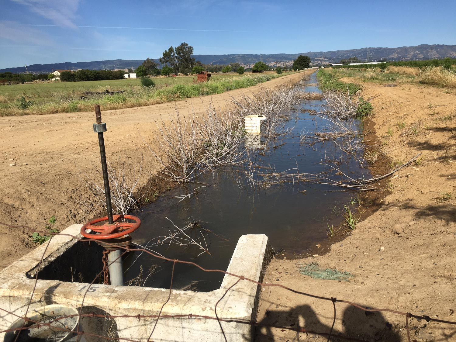 Irrigation water in ditch