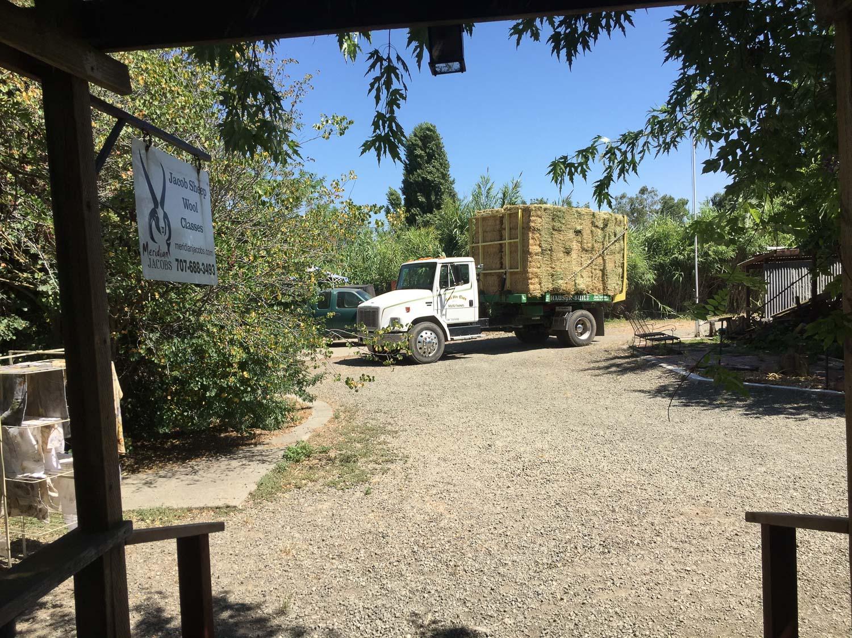 Truckload of alfalfa