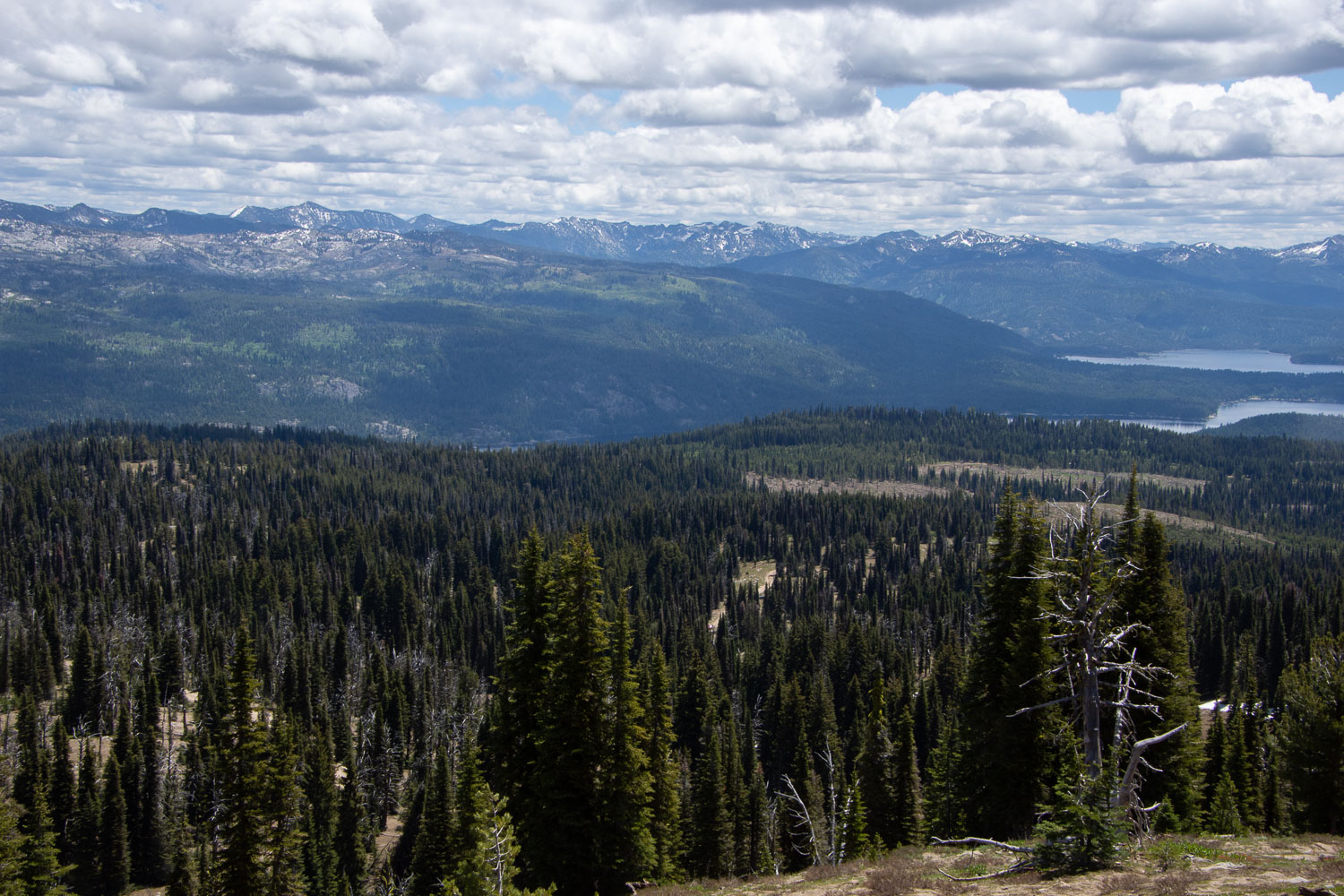 Payette National Forest, Idaho.