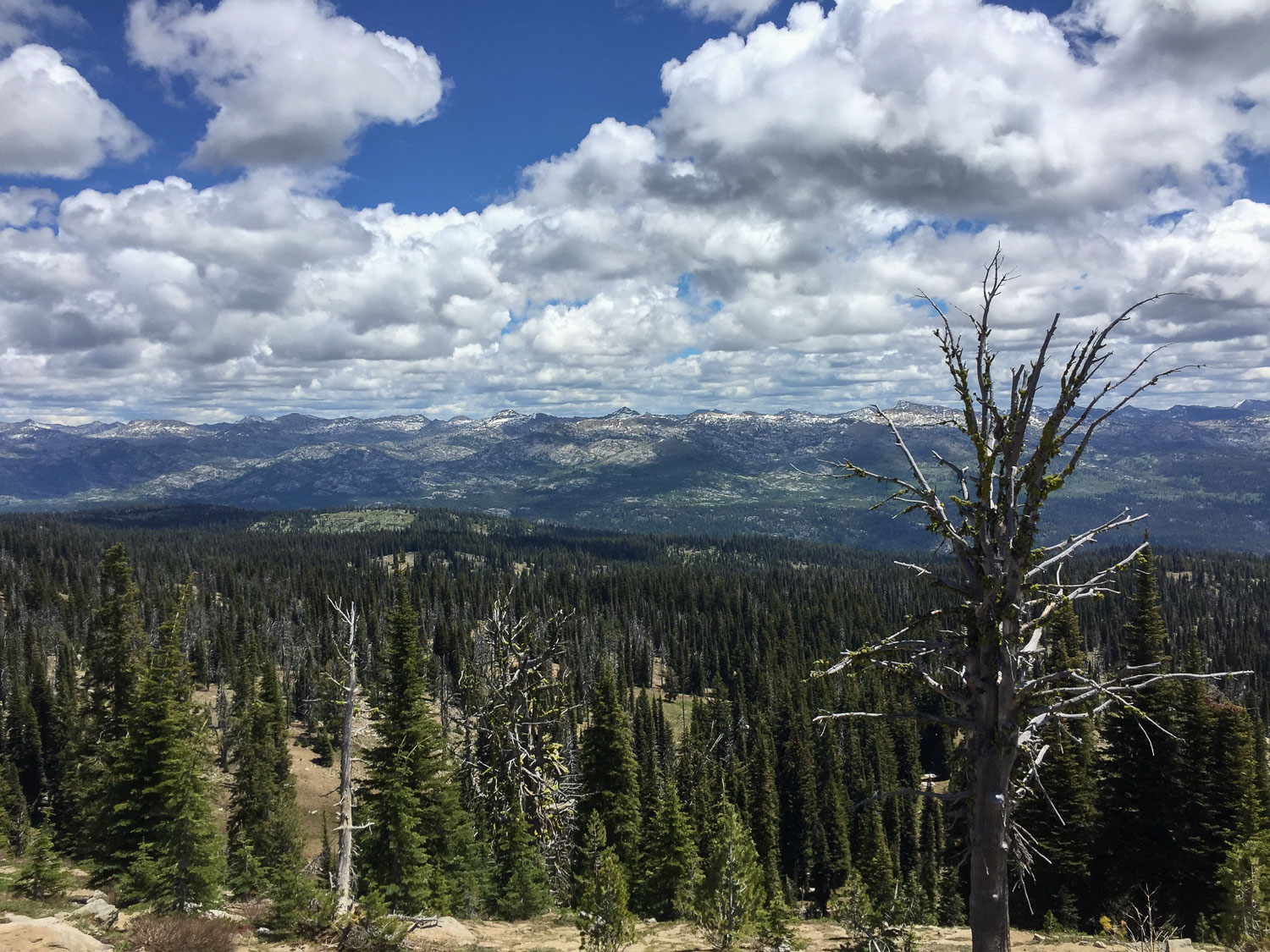 View from trail in Payette National Forest, Idaho