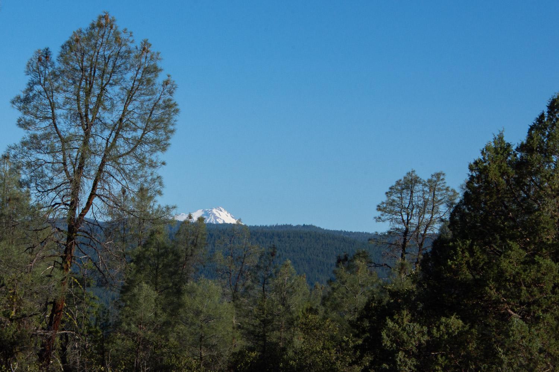 Ti[ of Mt. Shasta.