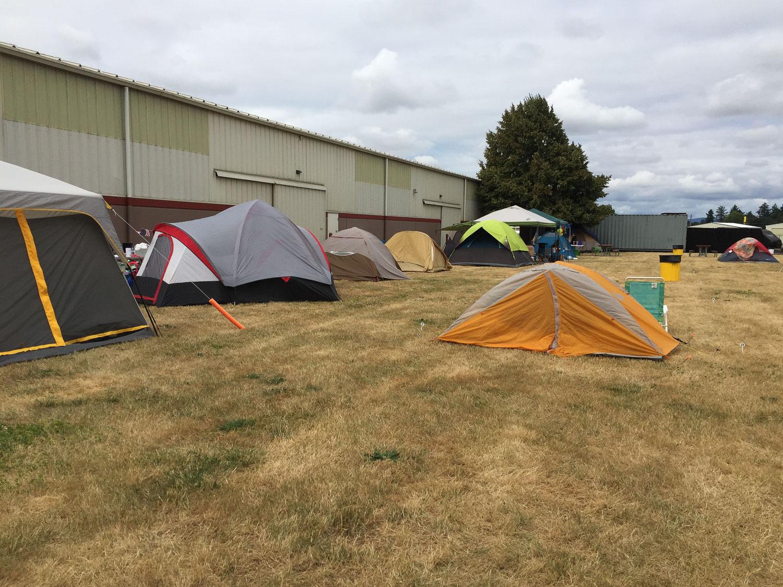 Camping at Black Sheep Gathering
