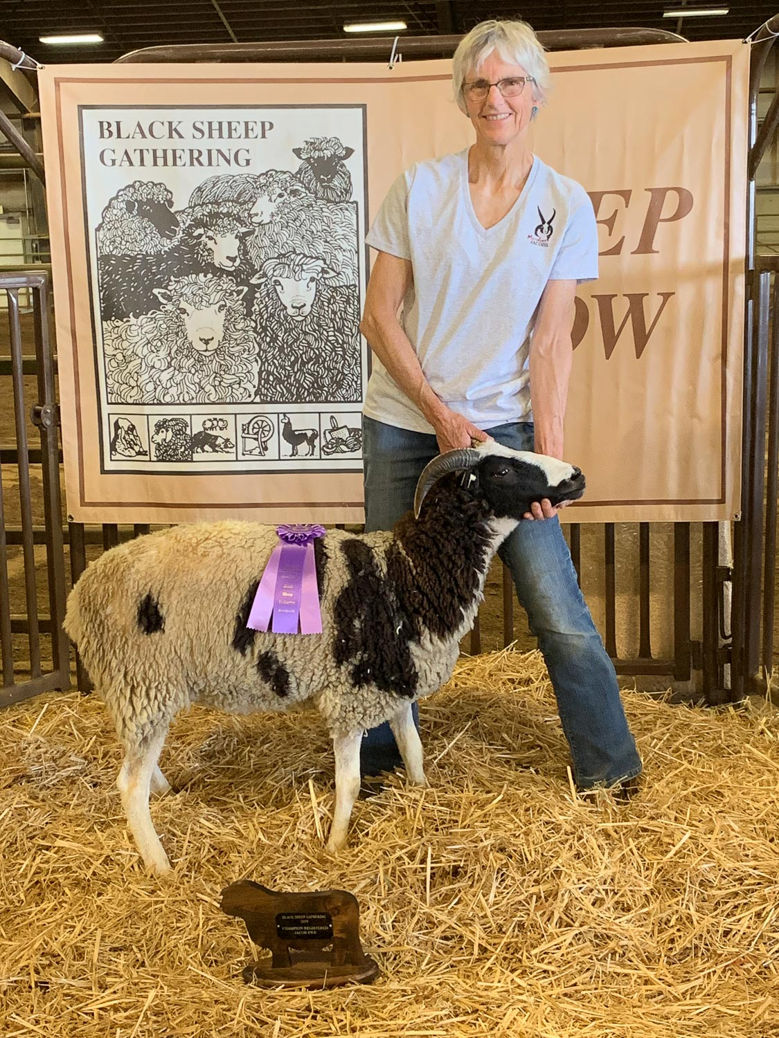 Champion Jacob ewe