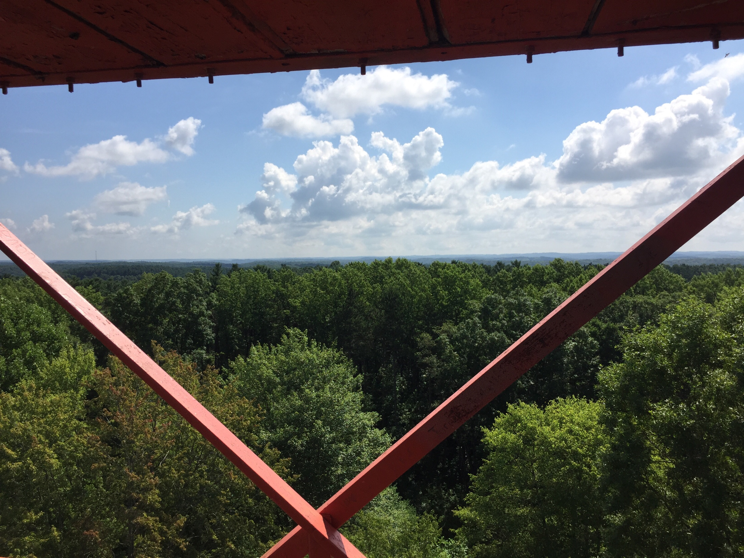 View from mohican  state park fire tower