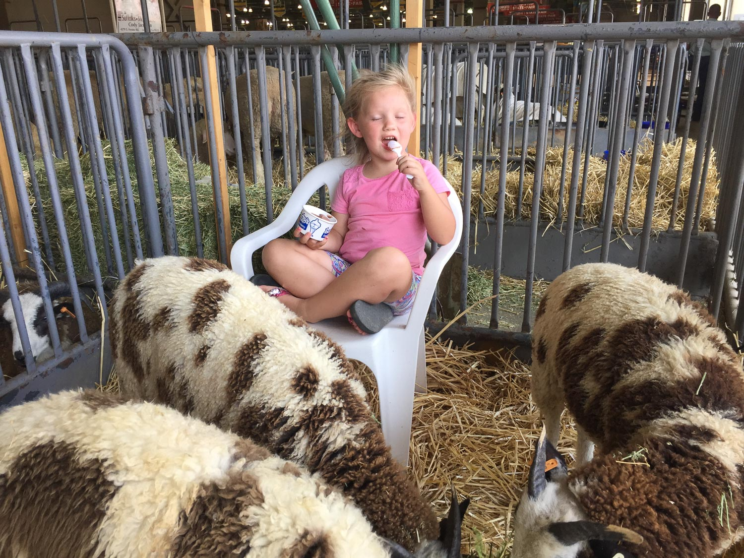 Eating ice cream in the sheep pen at California State Fair.