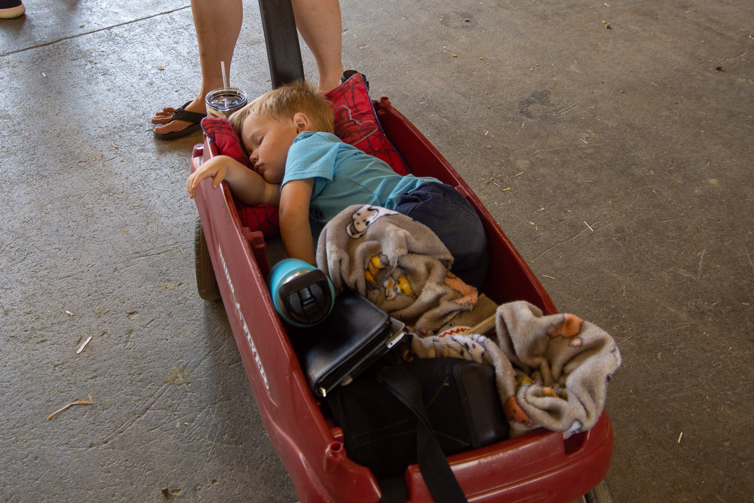 Boy napping in wagon at state fair.