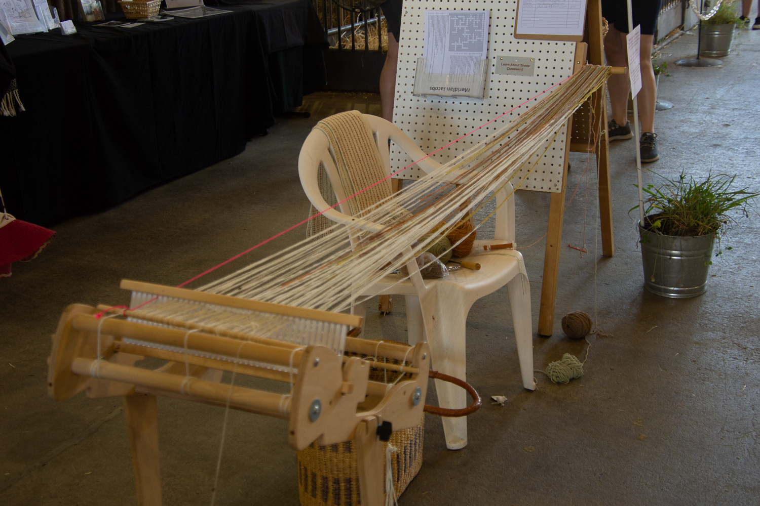 Warping a rigid heddle loom at the fair.