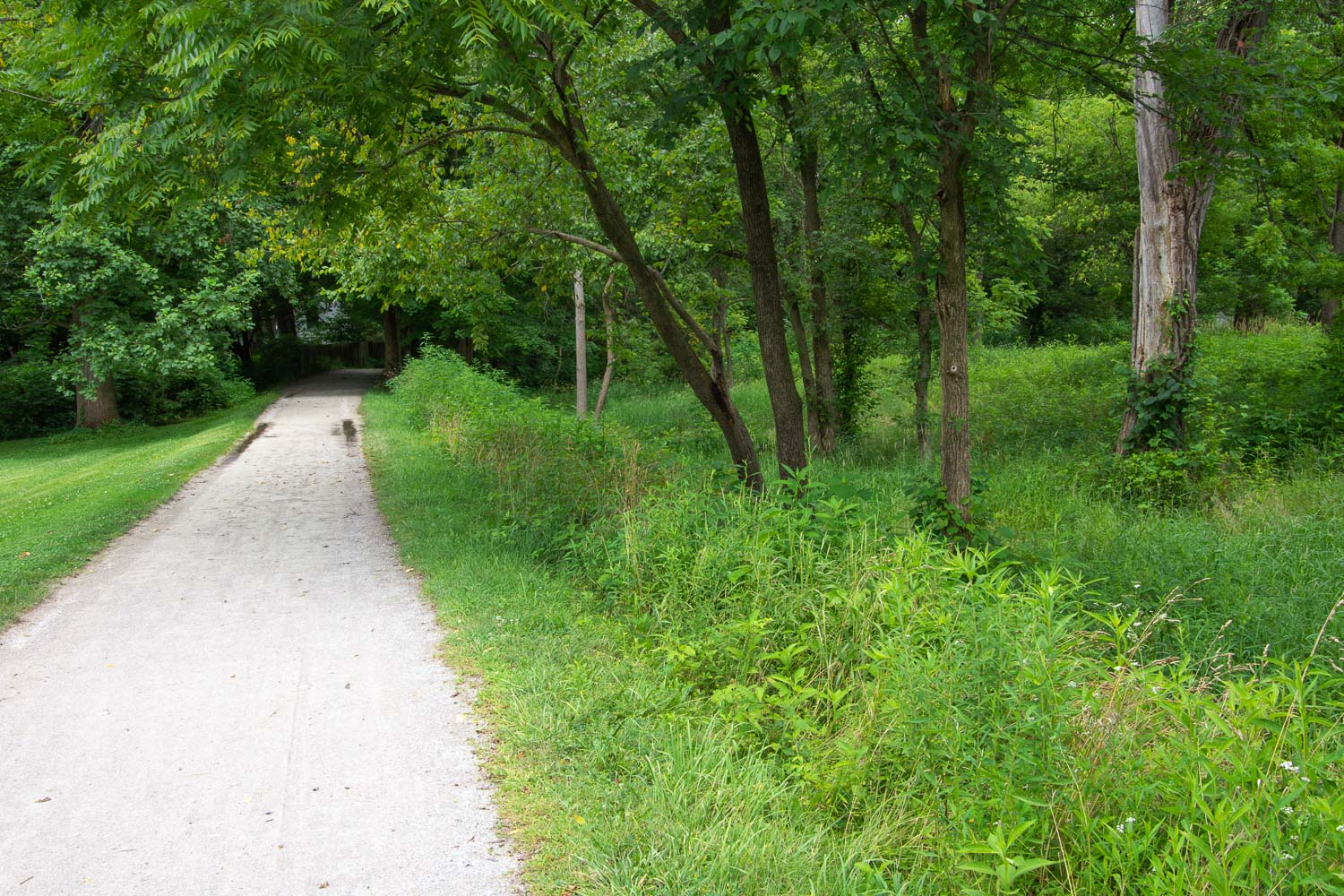 Towpath along the Ohio and Erie Canal