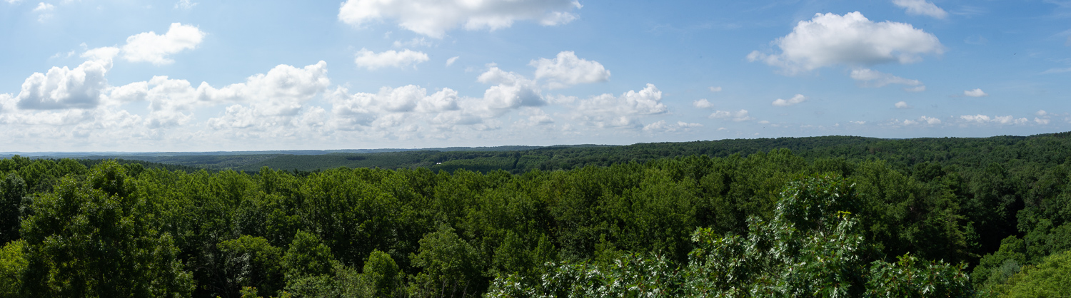 View from fire tower at Mohican State Park, Ohio.