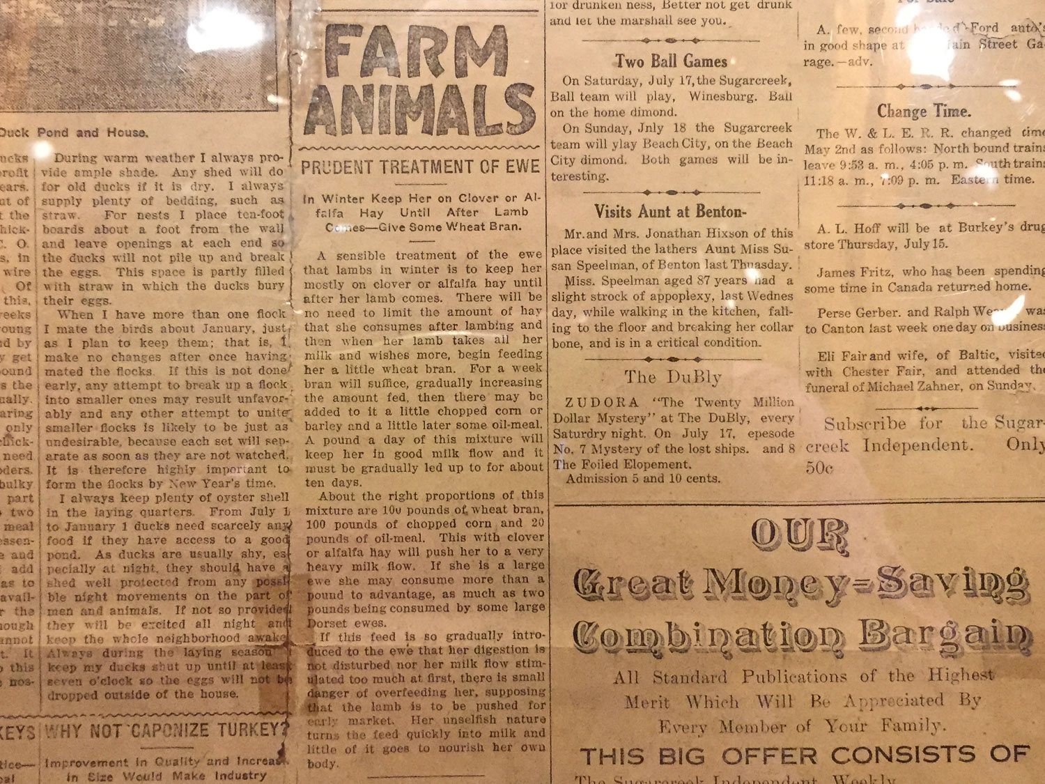 1915 newspaper article about sheep.