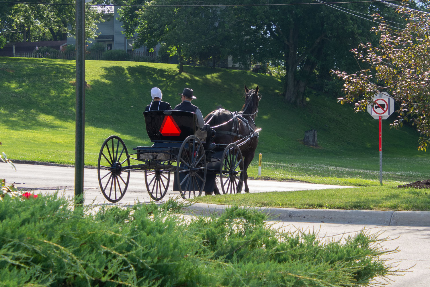 Horse and buggy in Homes County, Ohio.