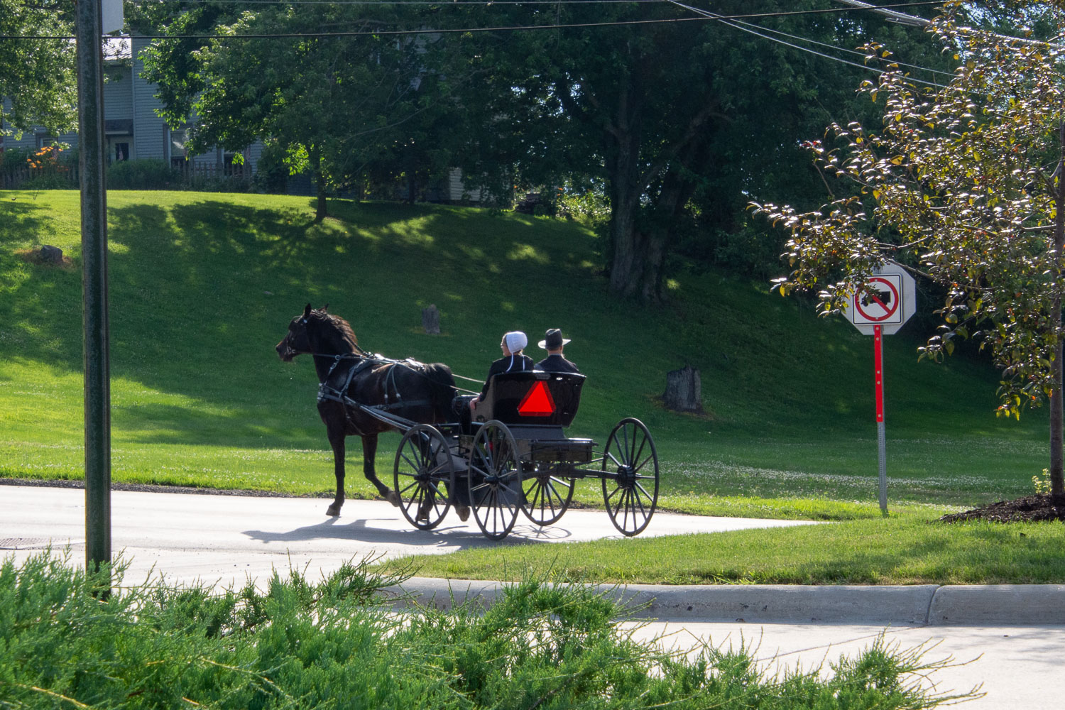 Horse and buggy in Holmes County, Ohio.
