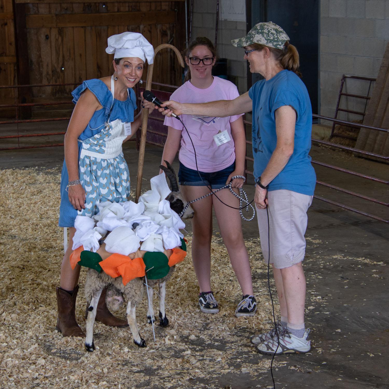 Costume class-Jacob sheep meeting
