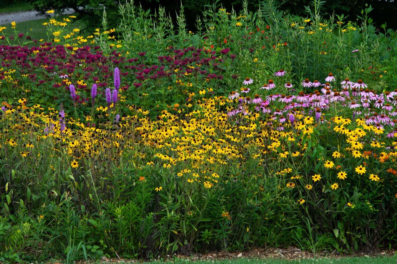 Holden Arboretum, Ohio.
