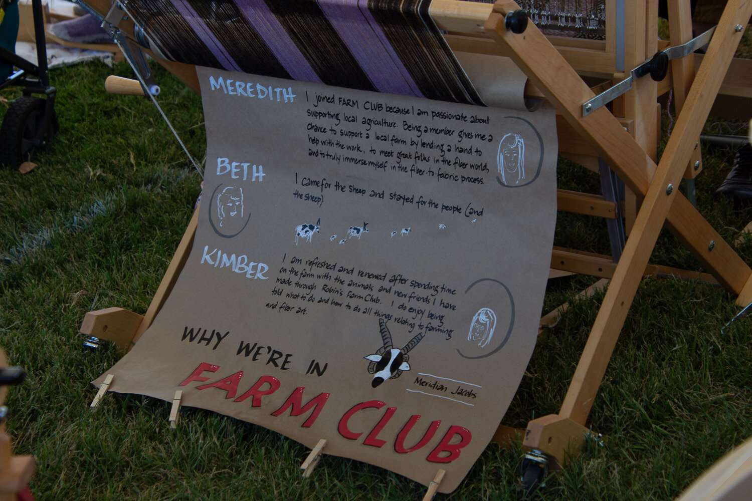 Farm club message at sheep to shawl contest.