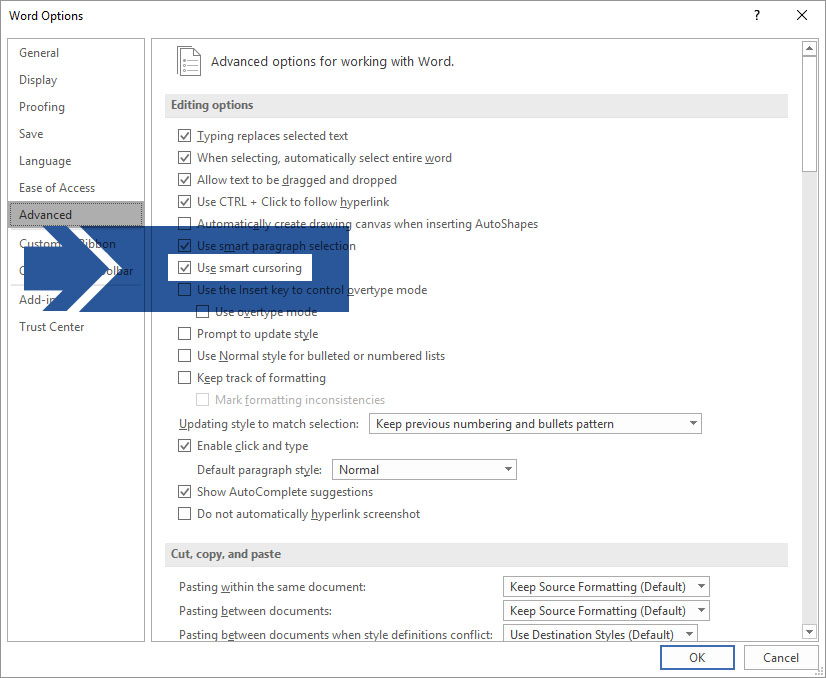 Microsoft Word File > Options > Advanced Dialog Box