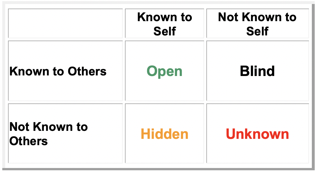 Johari Window Critical Thinking Tool