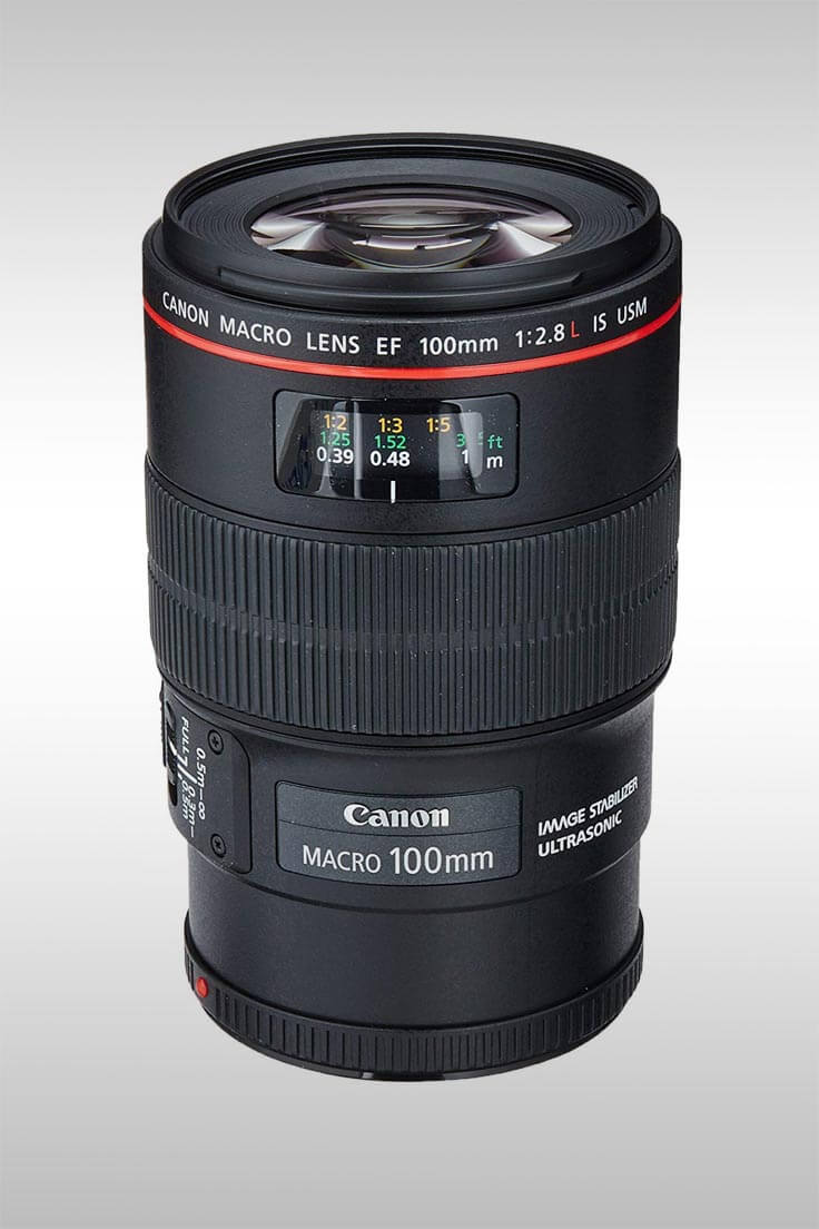 EF 100MM Macro f2.8L IS USM Lens - Image Credit: Canon
