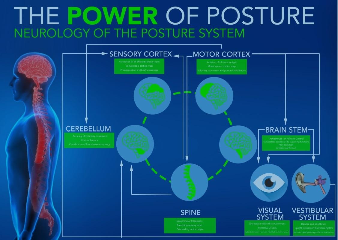Power of Posture.jpg