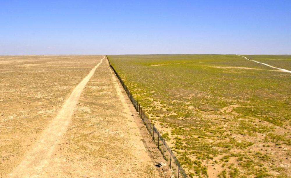 Overgrazing in the Syrian Steppe
