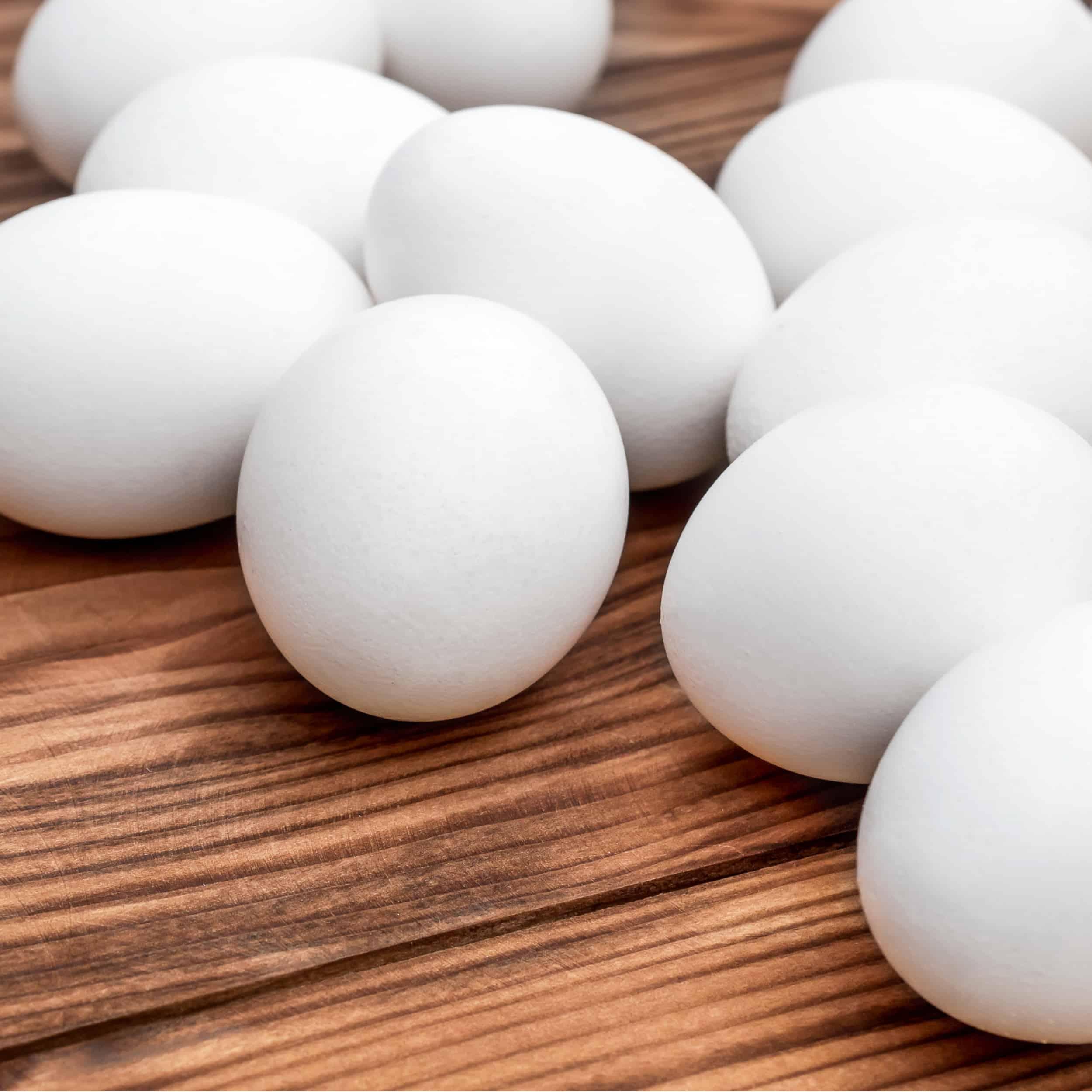 Egg_1.jpg