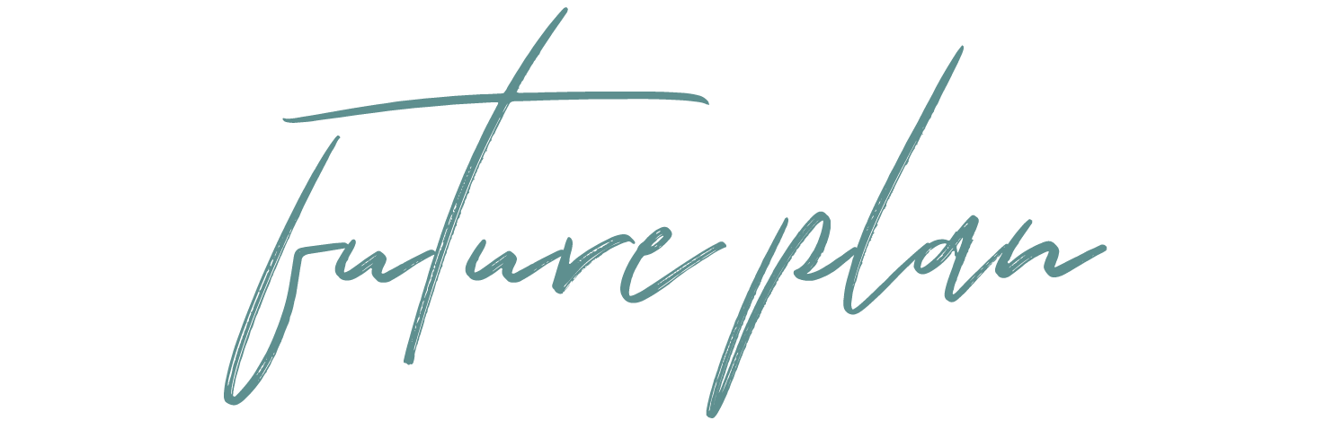 futureplan.png