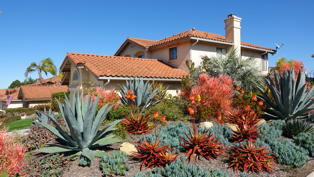 Drought tolerant Landscape Los Angeles