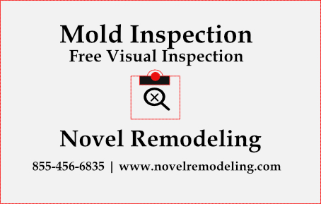 Mold inspection in Los Angeles