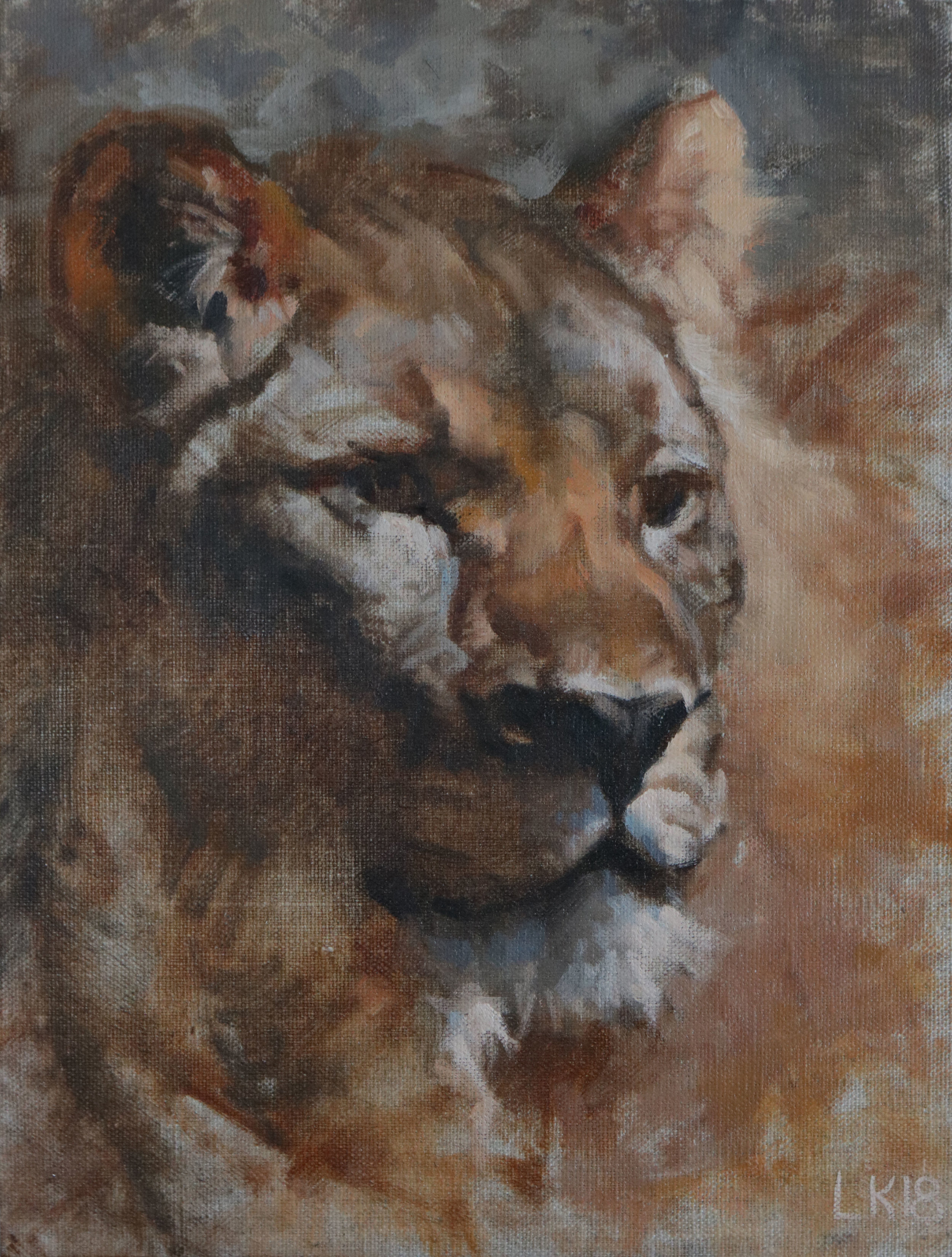 "Female Lion Portrait 9""x12"""