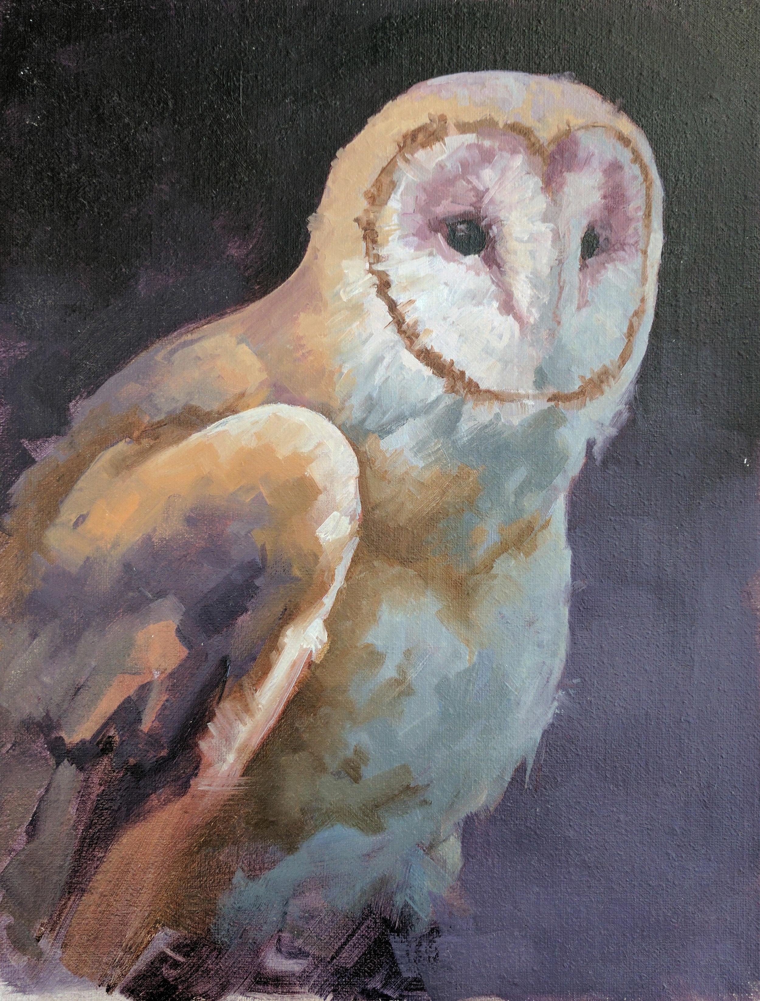 """Barn Owl 1 9""""x12"""""""