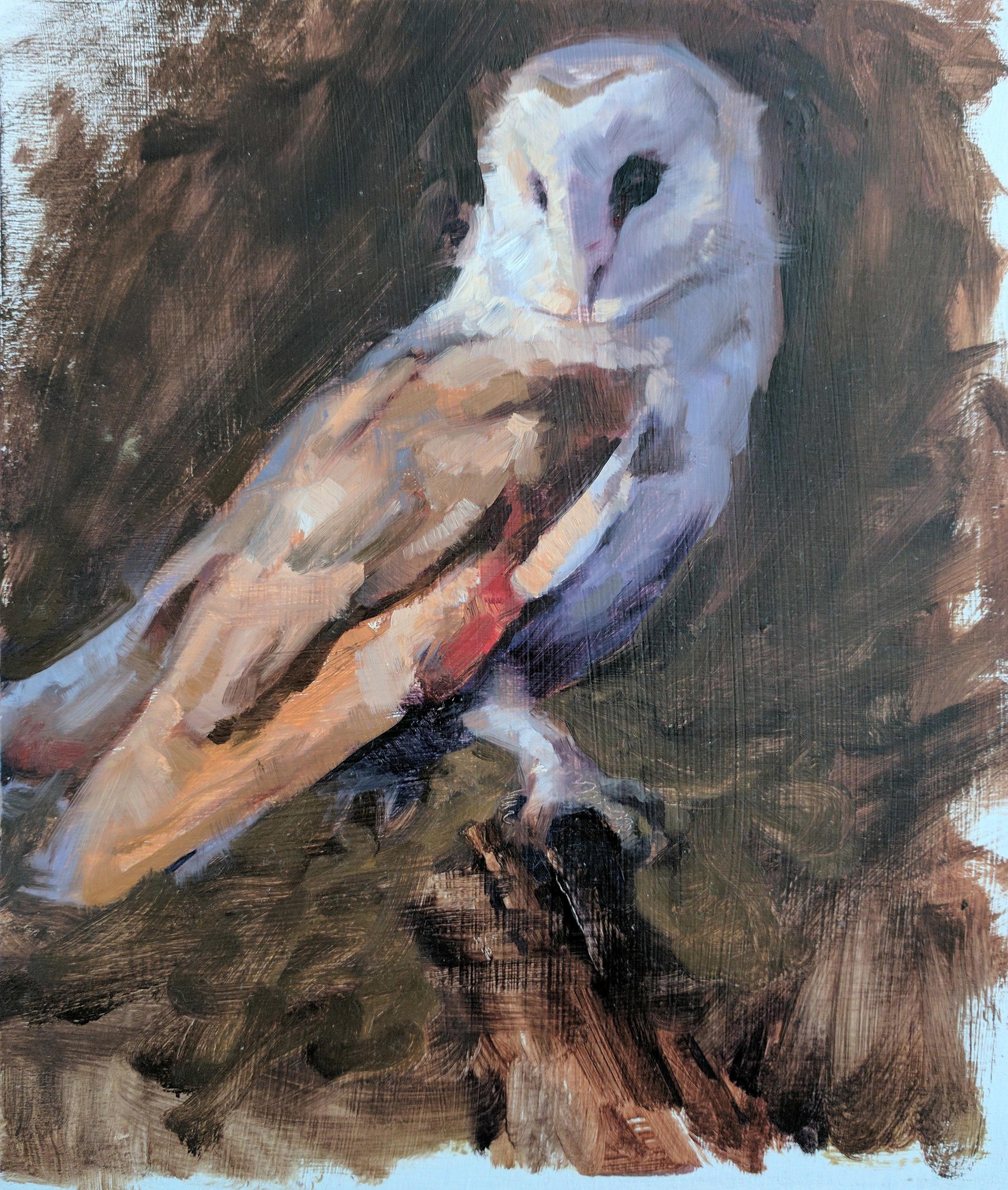 """Barn Owl 2 8.5""""x10"""""""