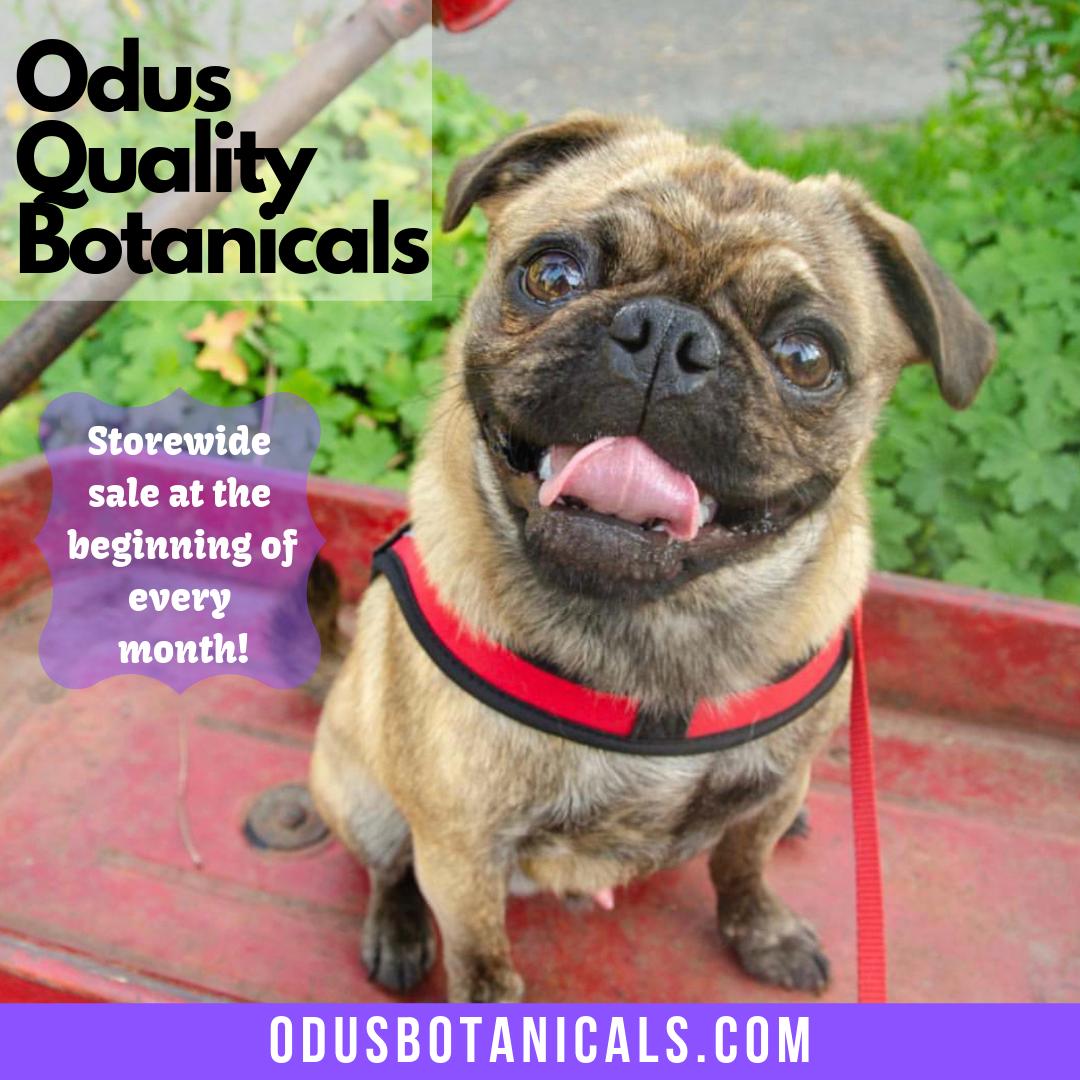 Odus Quality Botanicals